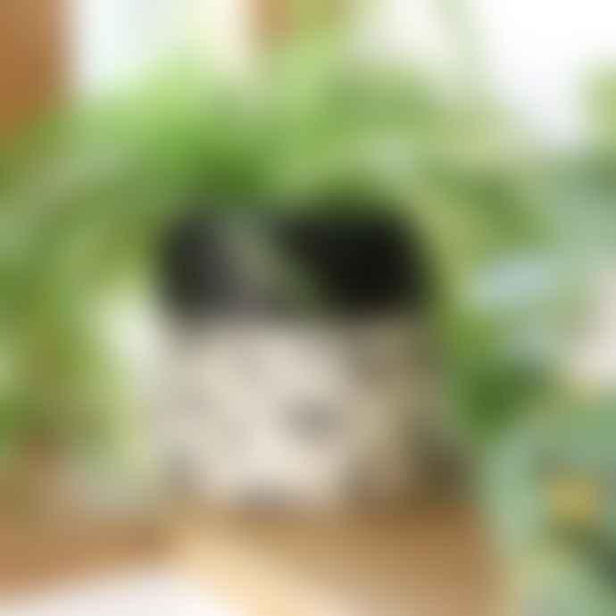 Lisa Angel Monochrome Lips Eyes Large Plant Pot
