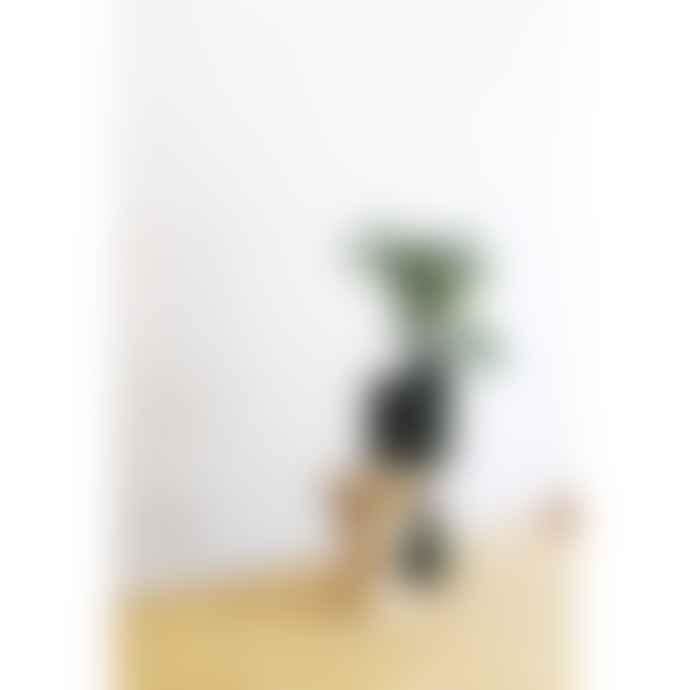 Mari Masot Bloq Series - Two Part Cone Plant Pot in Cream