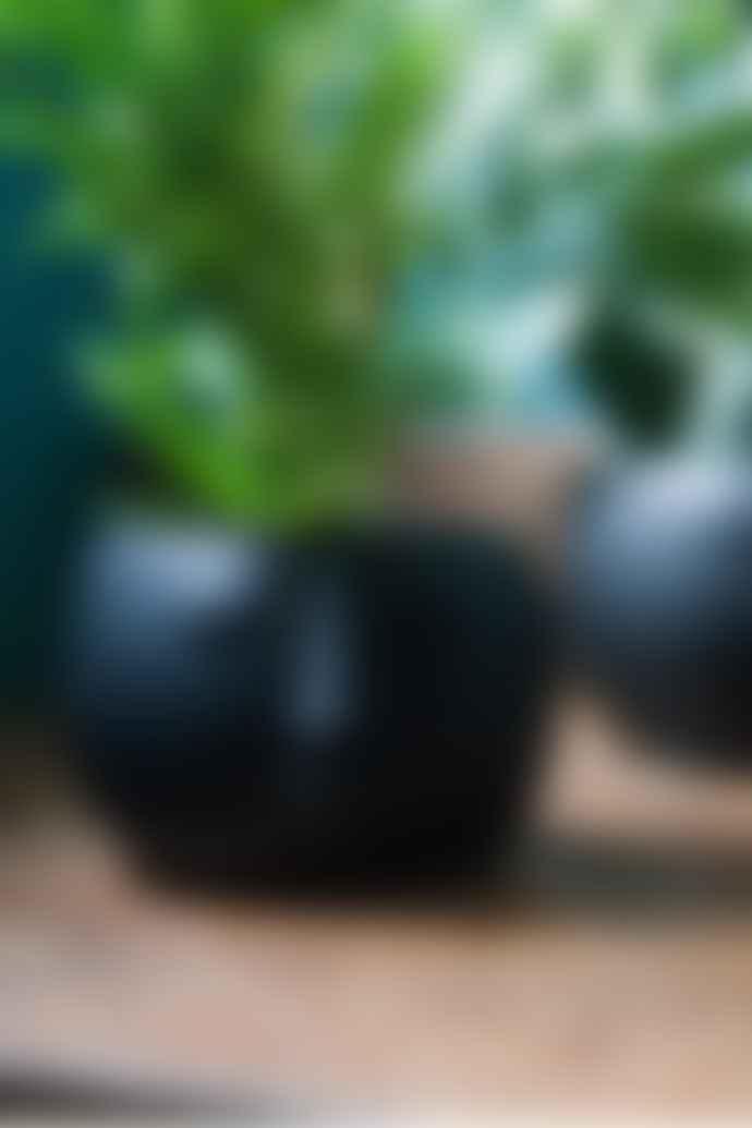 The Sue Parkinson Home Collection Black Pagan Face Planter