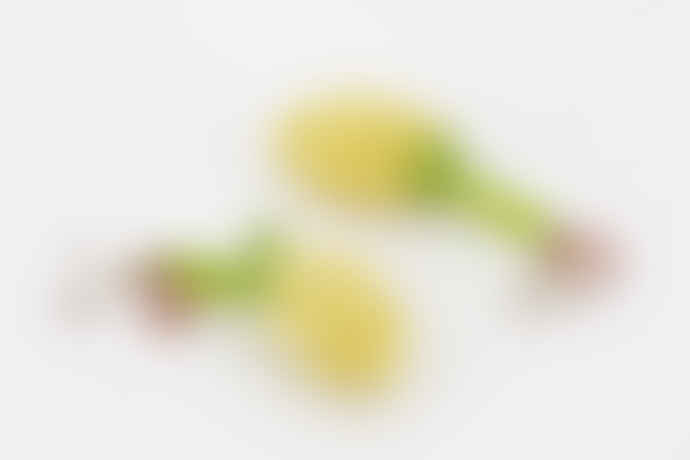 Susan Alexandra Lemon Meringue Earrings