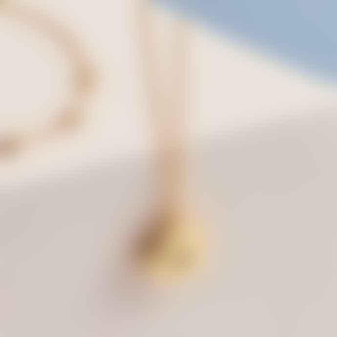Estella Bartlett  Gold Plated Locket Necklace