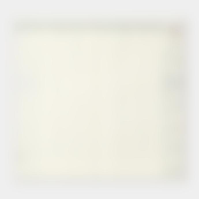 Midori Travelers Notebook Refill 2021 Weekly Diary Vertical