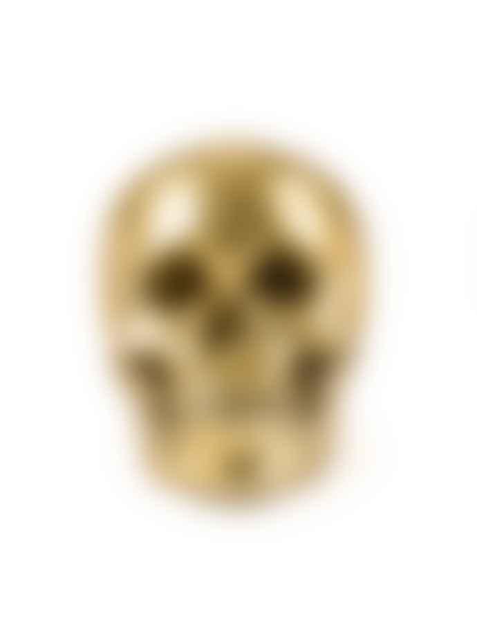 """SELETTI DIESEL Human Skull """"Wunderkammer"""""""