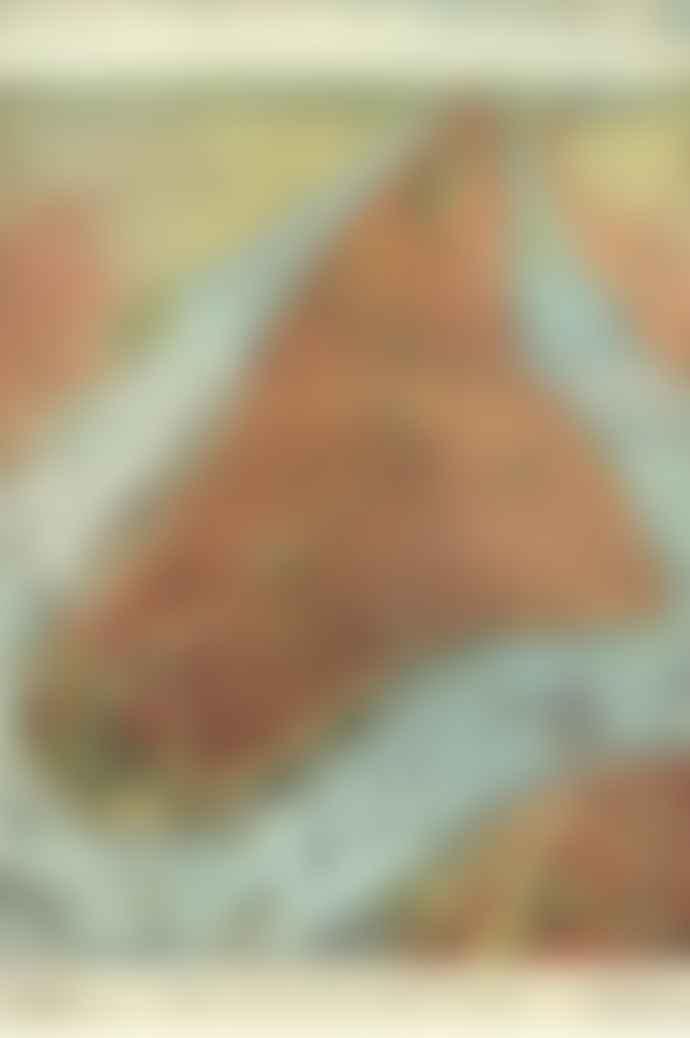 The Hambledon John Derian New York Jigsaw Puzzle