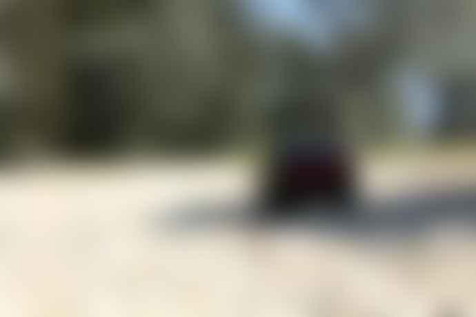 Playforever Leadbelly Skeeter Toy Car