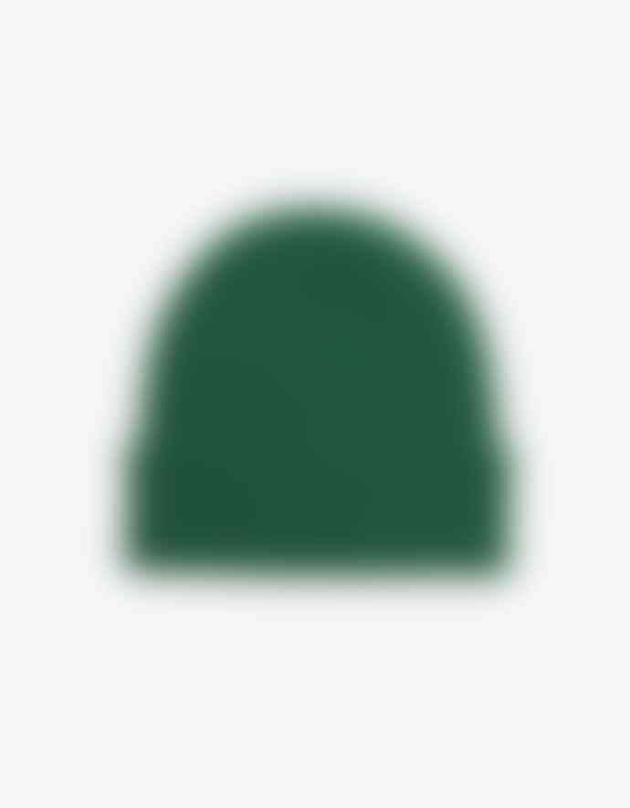 Colorful Standard Merino Wool Beanie Kelly Green