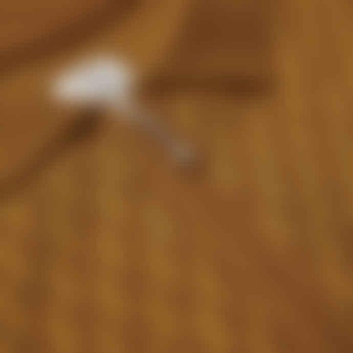 Polar Golden Brown Zip Pique T Shirt
