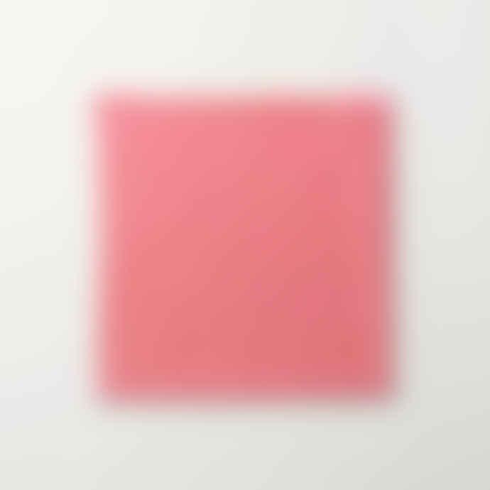 Becksondergaard Pink Vikko Scarf