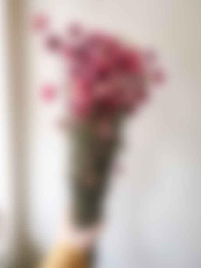 MoonKo Pink Dried Bunch of Acroclinium Flower