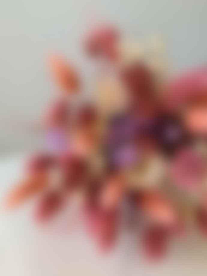 Pompon Bazar Bouquet of Dried Flowers Peach and Ecru