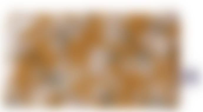 AU Maison Mustard Amalie Cosmetic Bag