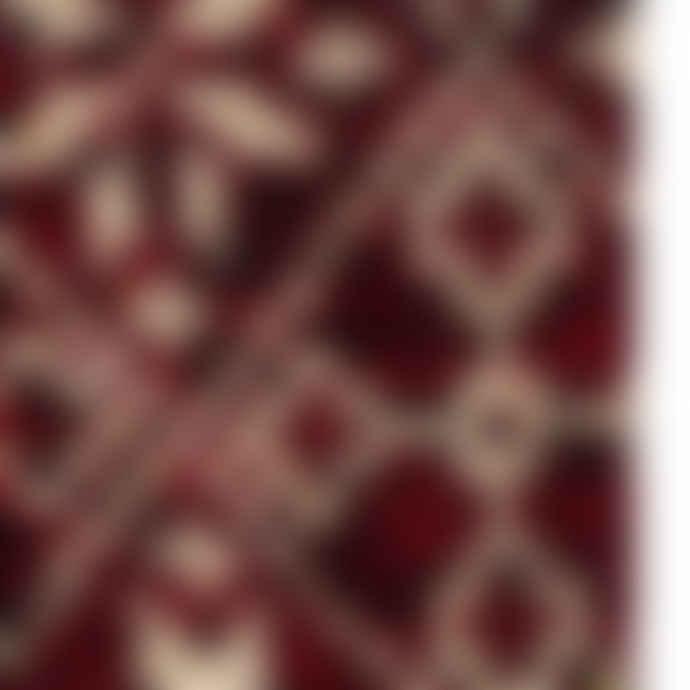 Royalties Moritz Chianti Cotton Socks