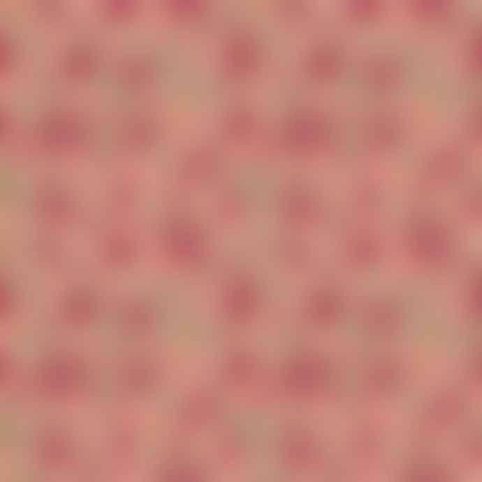 Genevie Silk Kimono Rose Lily