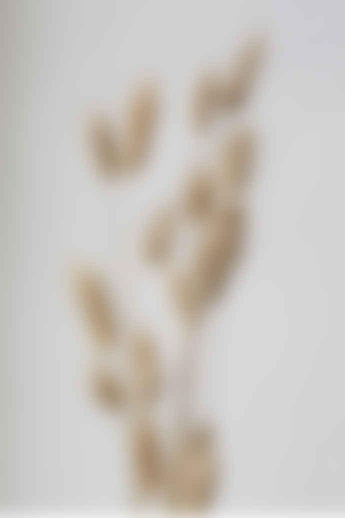 Garden State Candles Dried Natural Lagurus Bundle
