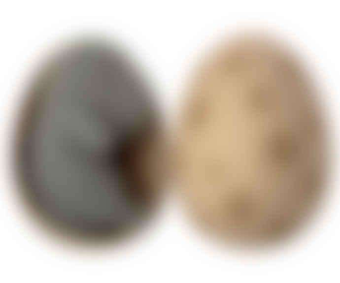 Maileg Gantosaurus Dinosaur in Spotted Egg