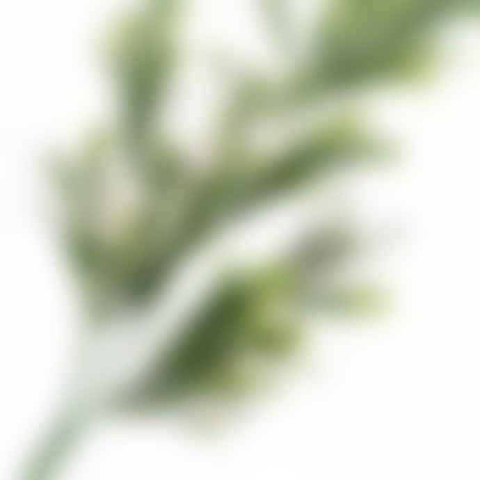 Gisela Graham Frosted Green & White Mistletoe Stem