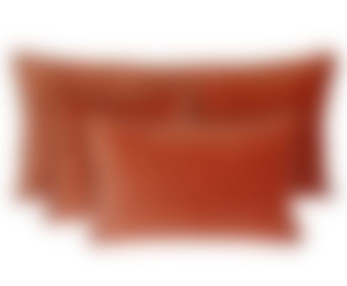 Harmony 40 x 60cm Cotton's velvet Delhi Cushion Cover