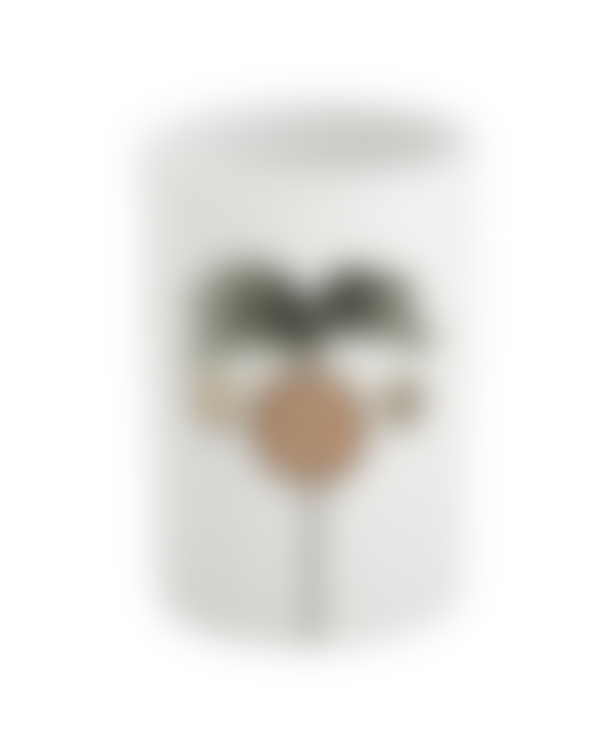 Anna + Nina Ceramic Storage Jar Oasis