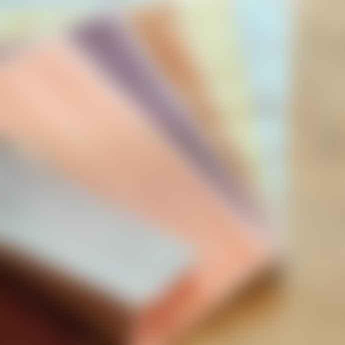 Nawrap Dishcloth Anti Odor R I B Tea Brown