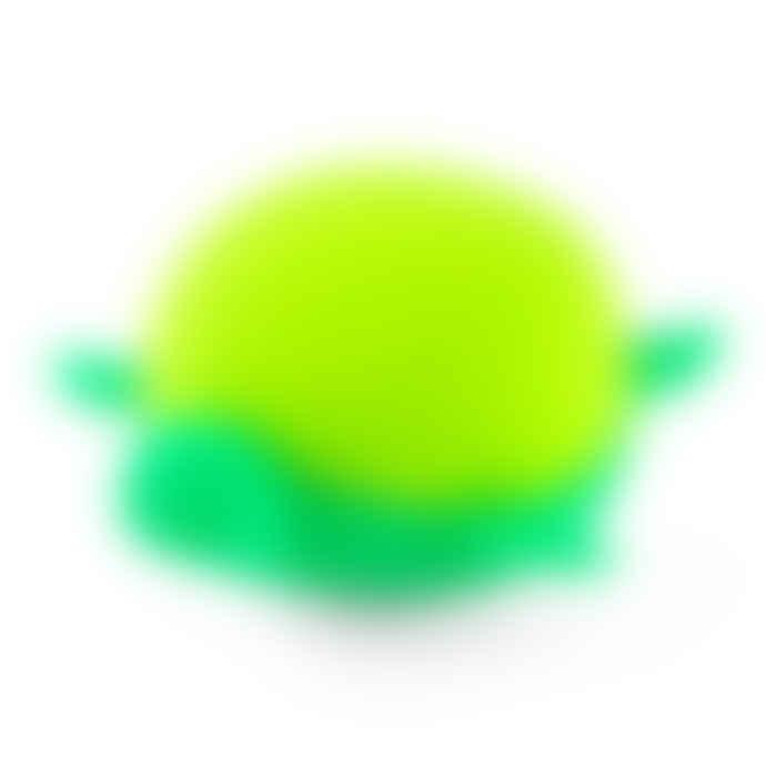 Gift Republic Turtle Egg Boiler