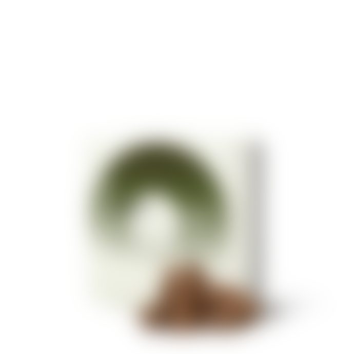 Haeckels Incense Cones Wild Fennel