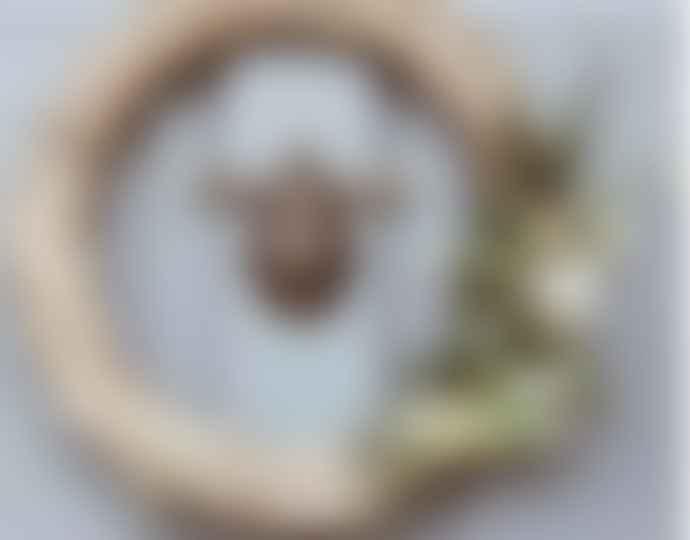 Bramley & White Bumble Bee Door Knocker Heritage Brass Finish