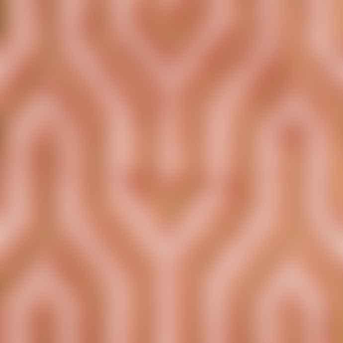 Bold Monkey I Feel So Soft Rose Pink Carpet 170 X 240