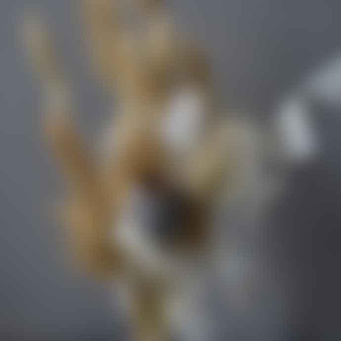 livs Dried Flower Bouquet - Mini Honesty Natural