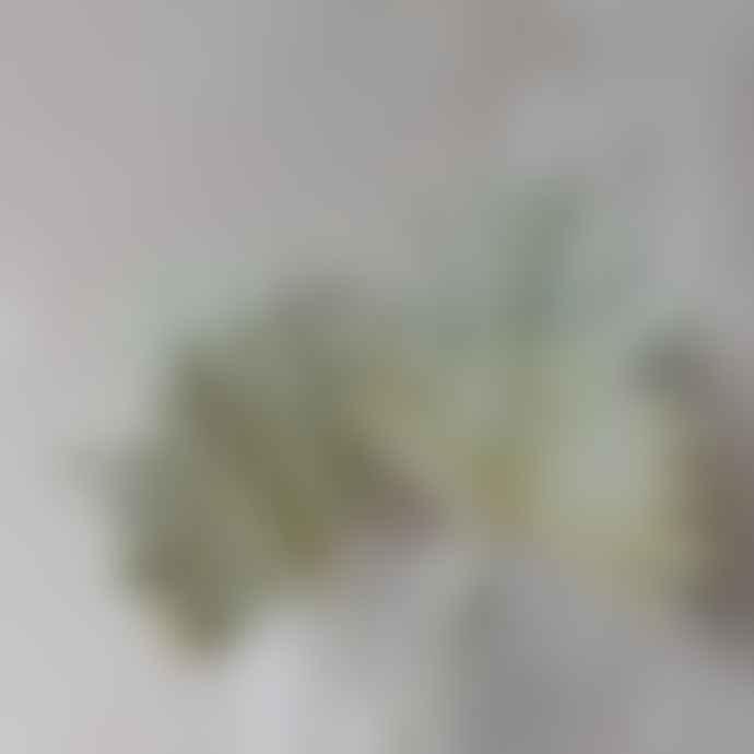 livs Dried Flowers - S/3 Natural Palm Sun, Medium