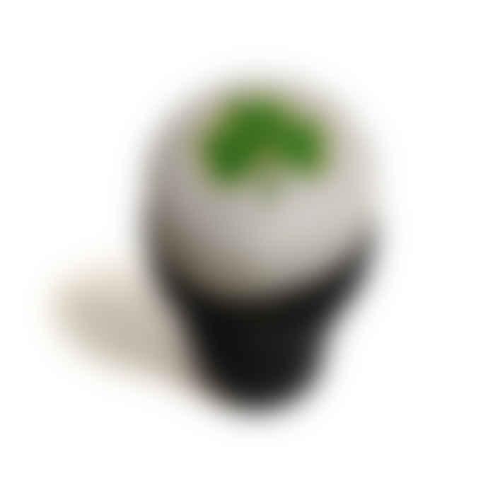 'Grrrness Drufft Glass' - Plush Dog Toy
