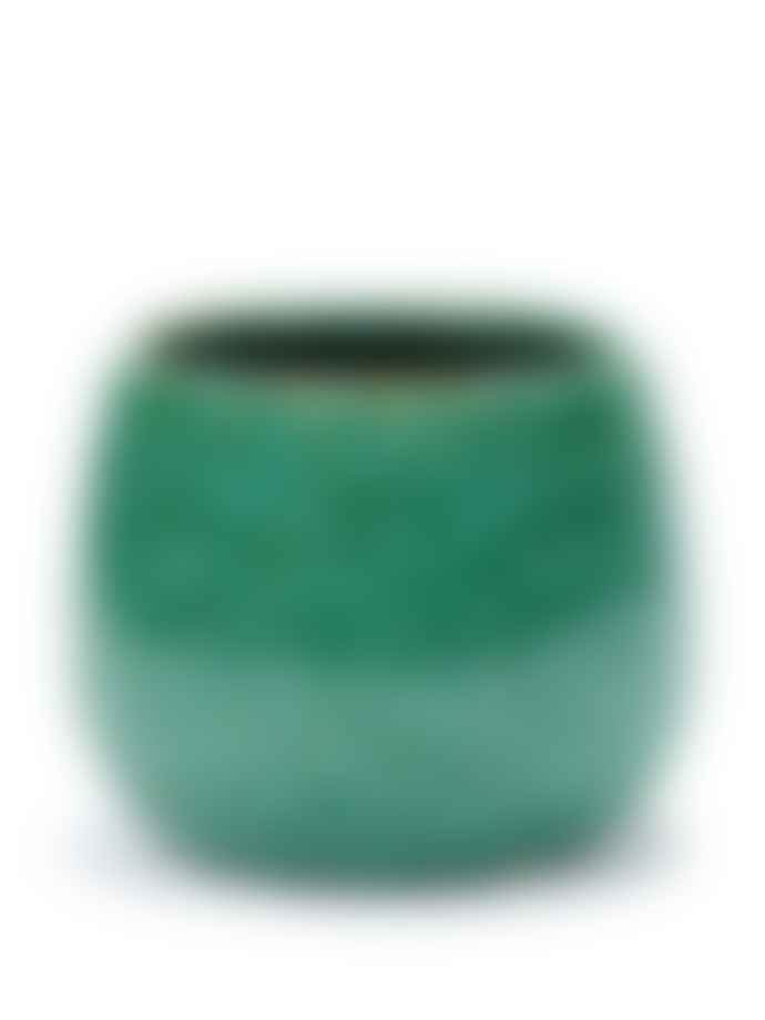 Botanical Boys Seagrass Green Pot 13cm