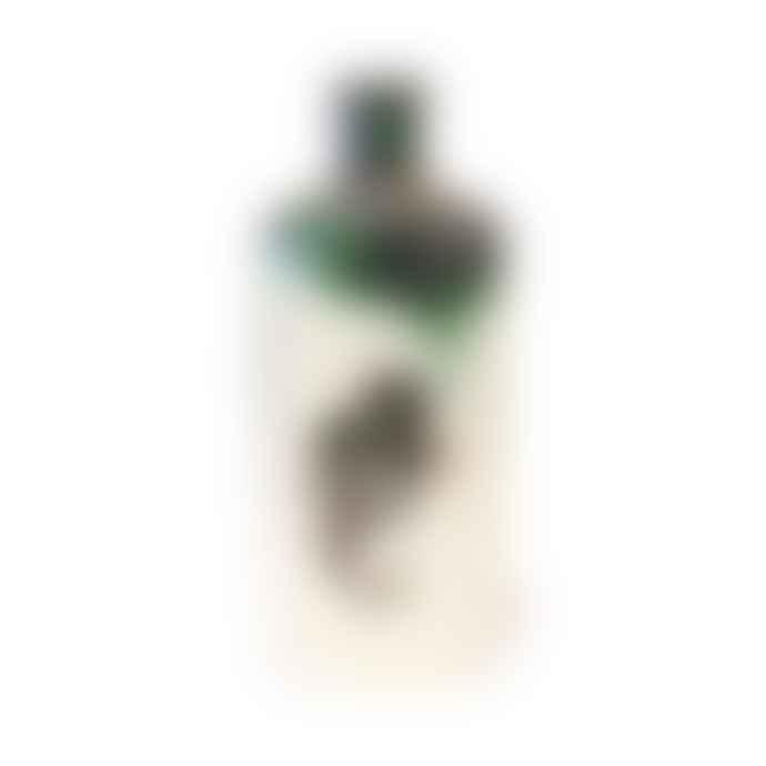 Jillian Riley Large Bottle With Seahorses
