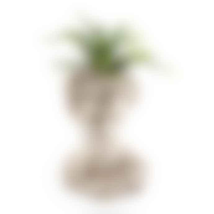 Rhubarb Stone Effect David Bust Flower Pot / Planter