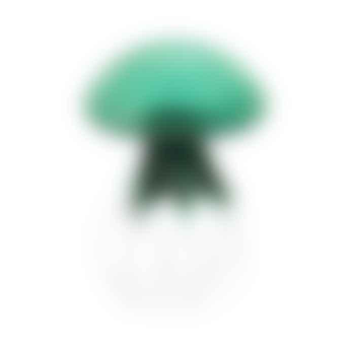 Abhika Jellyfish