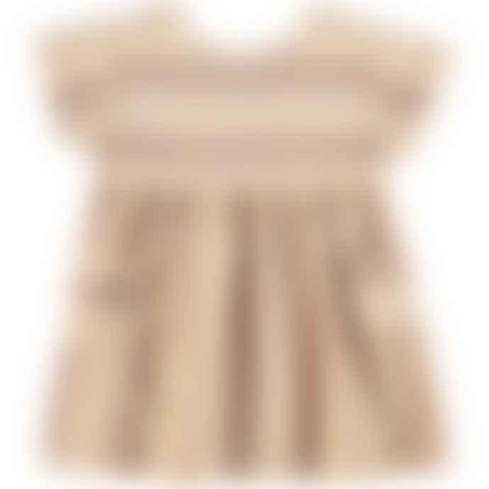 Piupiuchick Multicolor Striped Dress
