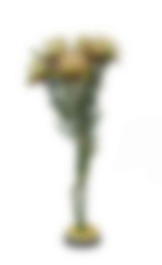 Cuemars Dried Flowers - Dried Plumosum Female Preserved Green Bunch