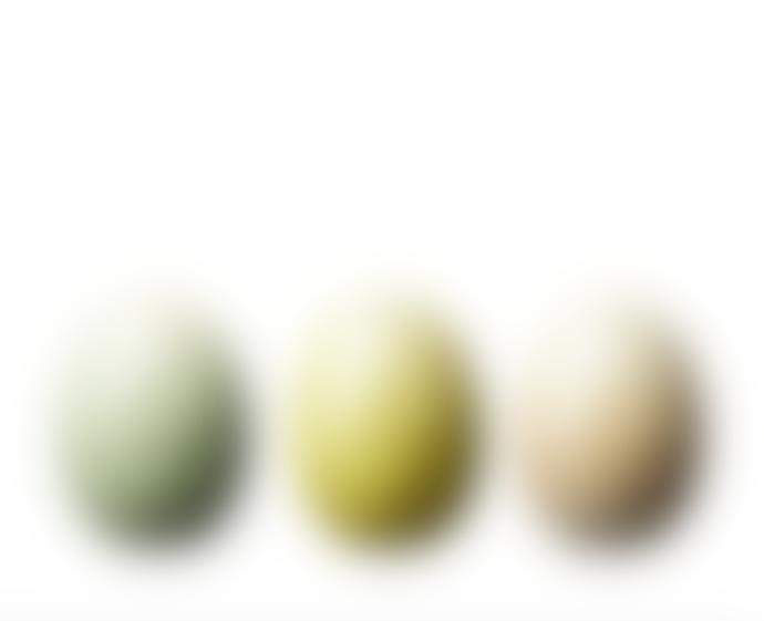 Wikholm Form Selma Egg Trio
