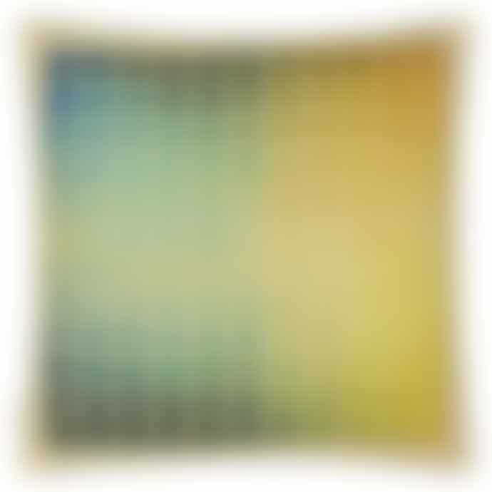 Designers Guild John Derian Paint Chart Azure Cushion