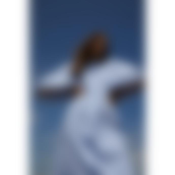 Resume Dakar Dress - Blue Gingham
