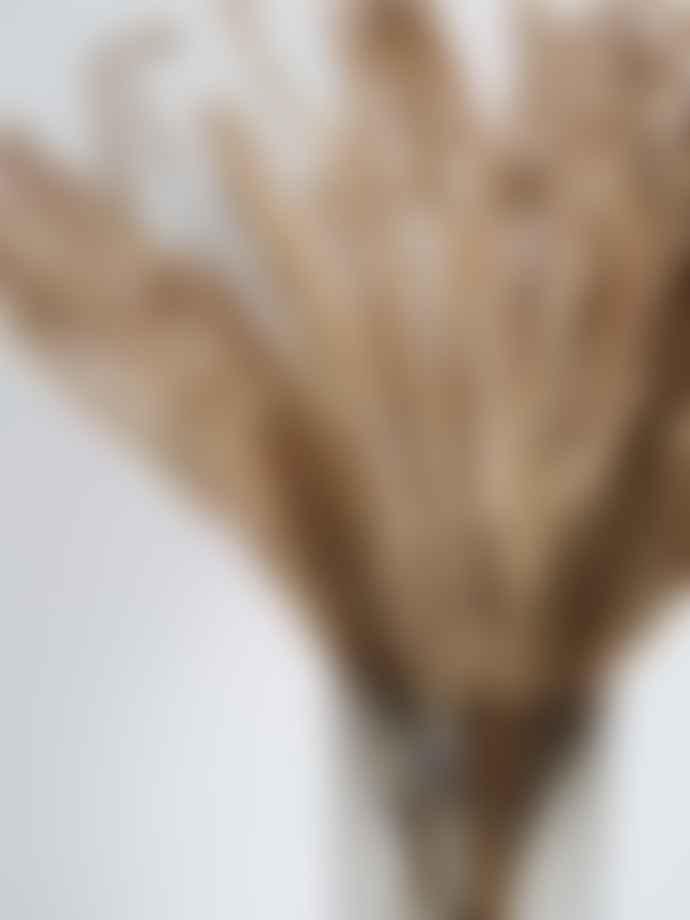 Wikholm Form Smoke Round Fluted Vase