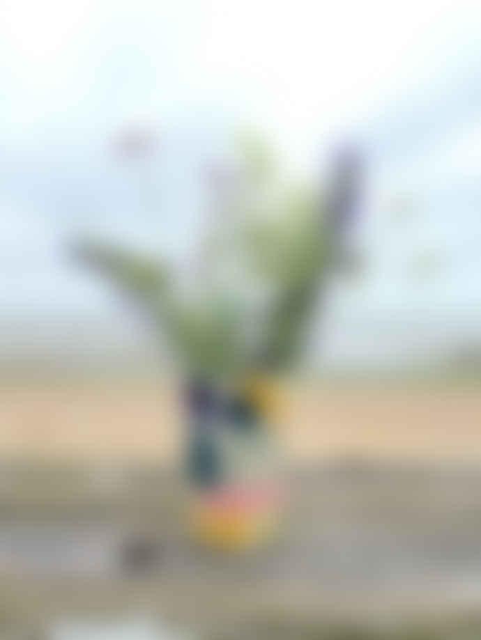 Donna Wilson Kaleido Vase