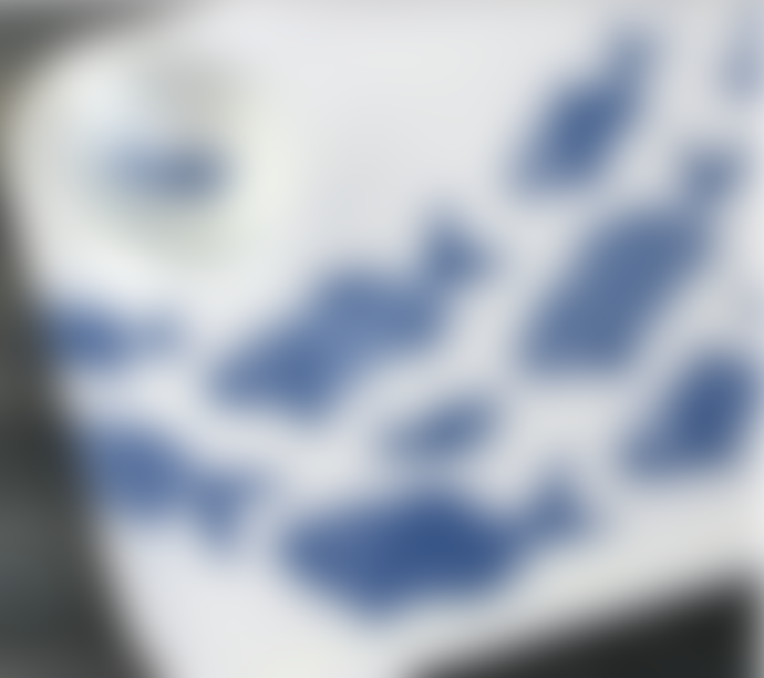 Jamida Shoal Of Fish Blue & White Ary Tray 36x28cm Medium