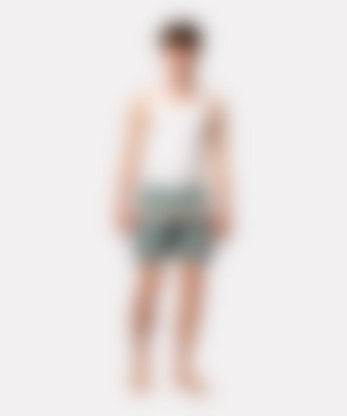 Revolution 4025 Rai Swim Shorts Lightgreen