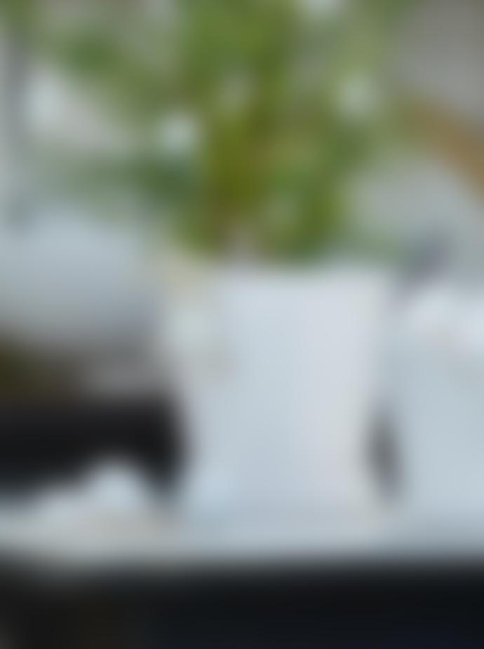 Wikholm Form Large White Astrid Pot