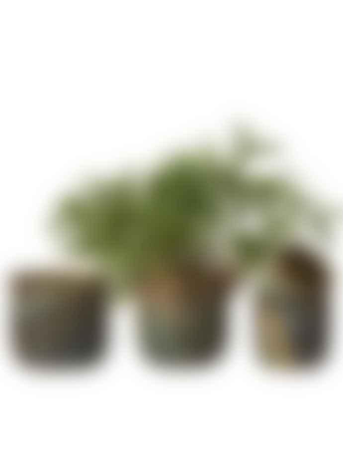 Wikholm Form Ribbed Manju Plant Pot Antique Green Small