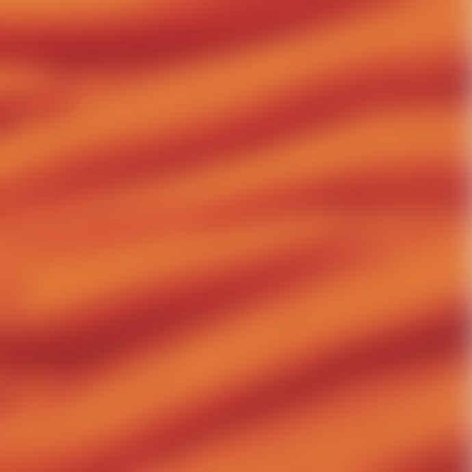 Pur Schoen Hand Felted Cashmere Soft Scarf Orange