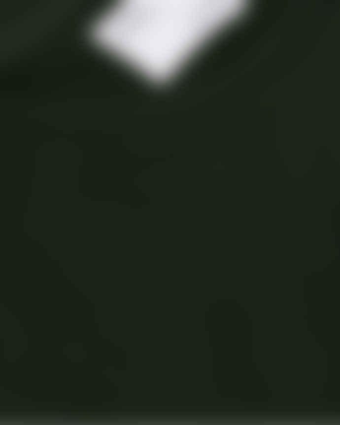 Colorful Standard Sweat Vert Fonce En Coton Bio Hunter Green
