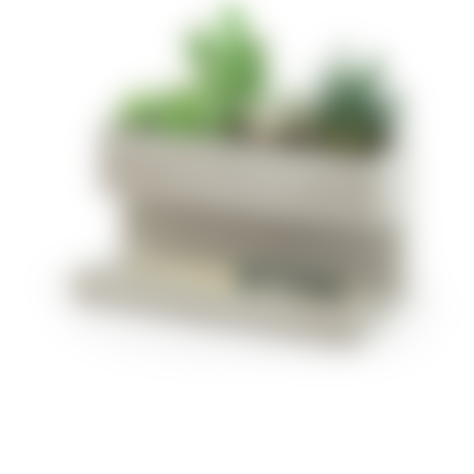 Kikkerland Design Planter And Pen Holder Desk Tidy Stationery Organiser Concrete In Grey