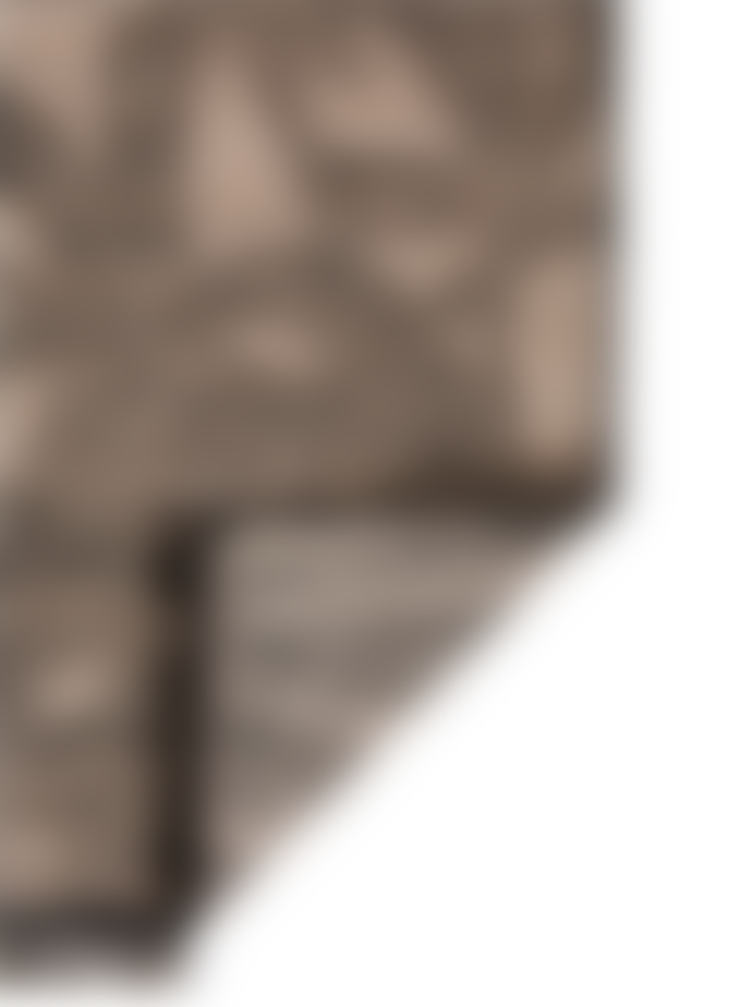 Viva Raise Fiona Natural And Black Palm Rug 160 X 230