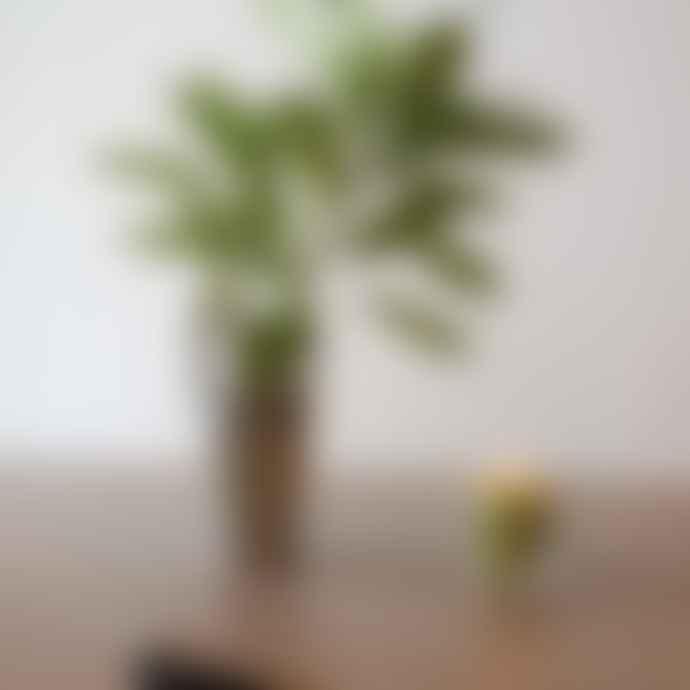 Yield Design Entenza Eucalyptus, Rosemary + Birch Artisanal Candle